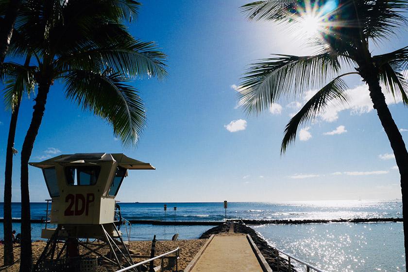 ハワイの近況をリポートします!〜Part 2〜